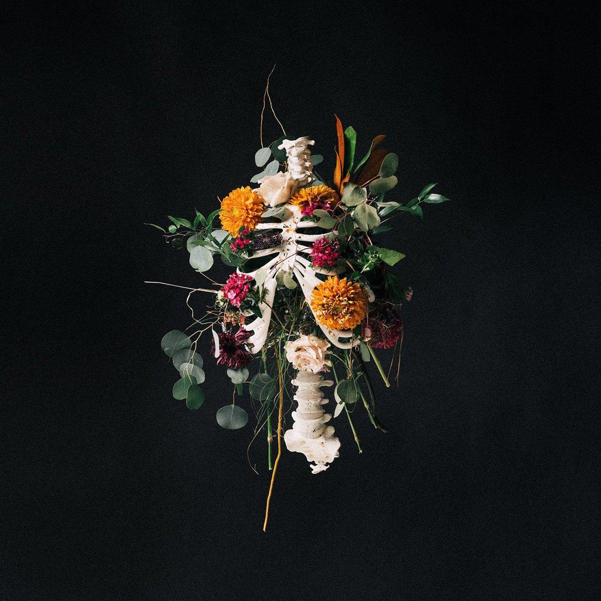 Generic image for missing album art